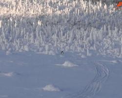 гора Нуорунен в Карелии зимой