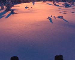 хибины снегоходный тур